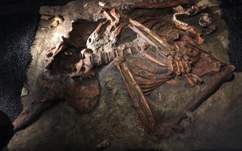 Replica Neanderthaler-skelet Kebara