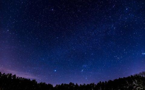 foto, bomen, sterrenhemel