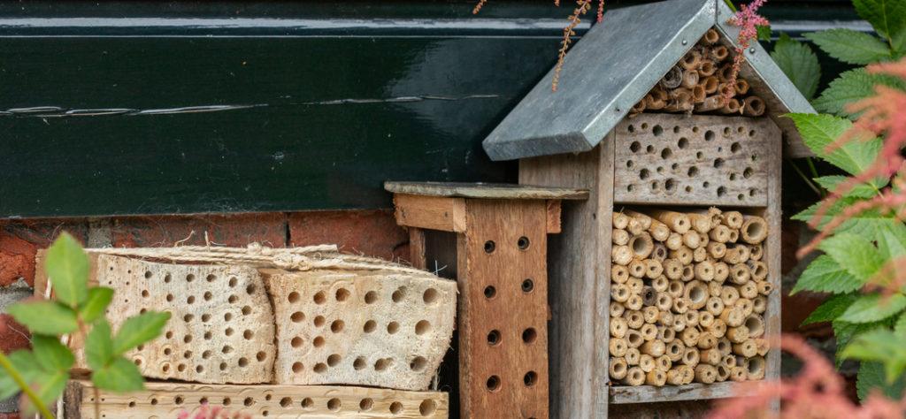 Bijenhotels met verschillende diktes nestelgangen gemaakt van hout, riet of bamboe. Foto: