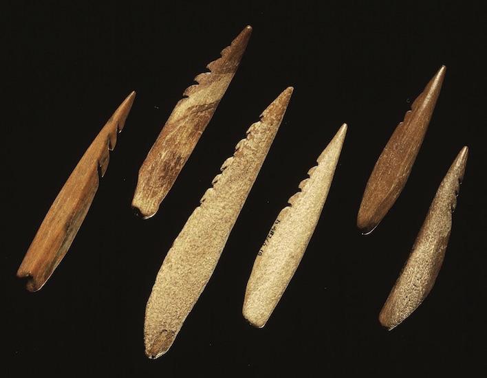 Selectie van benen spitsen uit het Mesolithicum (grofweg 12.000 - 6.000 jaar geleden) gevonden op de Maasvlakte. (Foto: Rijksmuseum van Oudheden, Leiden)