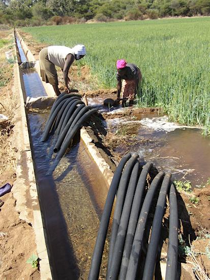 Irrigatie Sashe (Zimbabwe)