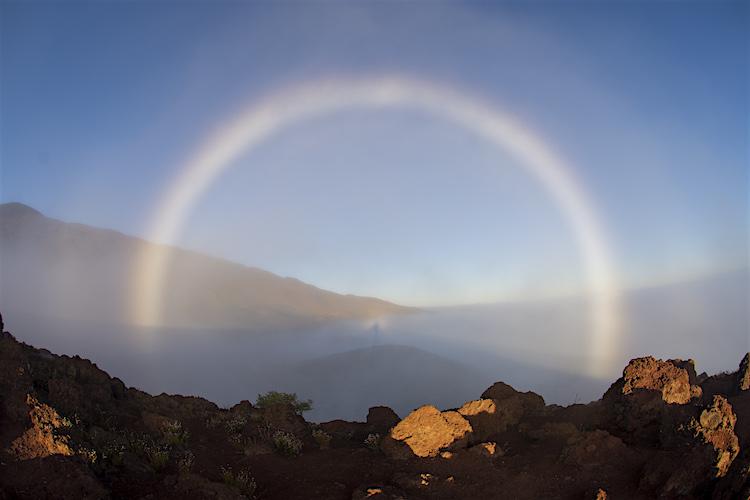 Hawaii Mistboog