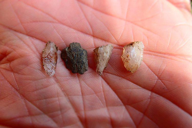 Microlieten